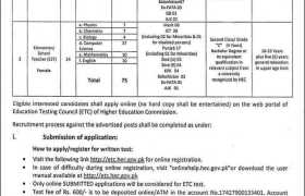 Jobs in Federal Directorate of Education 2021