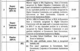 Jobs in Punjab Tianjin University Lahore 2021
