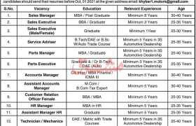 3S Automobile Dealership Peshawar Jobs 2021