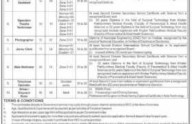 Jobs in Population Welfare Department KPK 2021