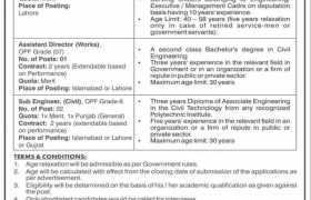 Jobs in Overseas Pakistanis Foundation 2021
