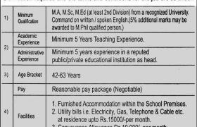 Jobs in DPS Hafizabad 2021