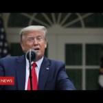 "Coronavirus:  Donald Trump ""to suspend all immigration"" during pandemic – BBC News"
