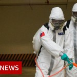Coronavirus: Largest examine suggests aged and sick are most in danger – BBC Information