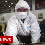 Coronavirus illness named Covid-19 – BBC Information