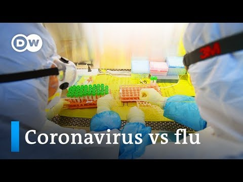 Coronavirus vs flu: Which is extra harmful?   DW Information