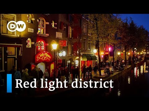 Amsterdam's crimson gentle district a rest room for vacationers? | Give attention to Europe