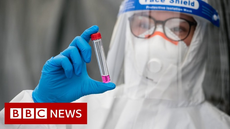 Coronavirus: WHO data highest international circumstances in 24 hours – BBC Information