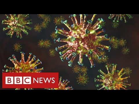 """New mutated coronavirus from South Africa is """"extremely regarding"""" – BBC Information"""
