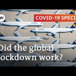 How nicely did the worldwide coronavirus lockdown work?   COVID-19 Particular