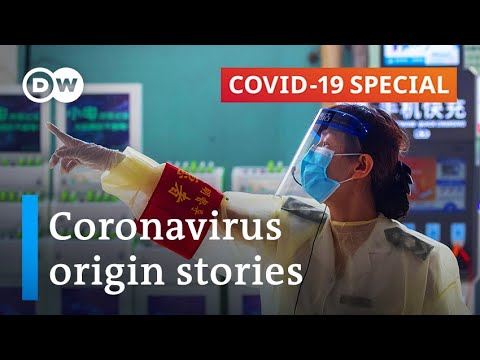 The place did the coronavirus come from?   COVID-19 Particular