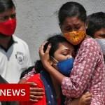 'A coronavirus tsunami we had by no means seen earlier than' – BBC Information