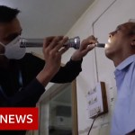 India's lethal fungus epidemic – BBC Information