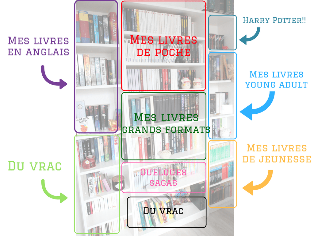 comment j organise ma bibliotheque