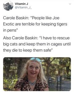 tigerkingcarole