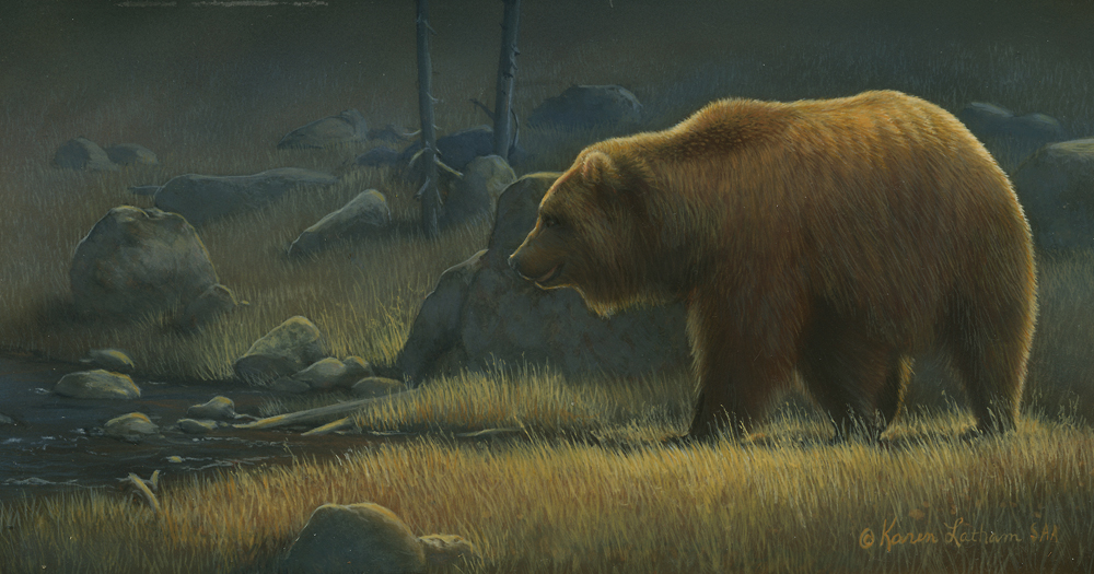 Wanderings - grizzly by Karen Latham - small