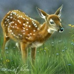 """Wildflower Meadow - Whitetail Fawn, 5"""" x 7"""", watercolor on board, ©Rebecca Latham"""