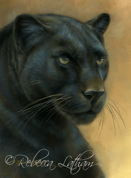 black leopard and notes on sterling silver