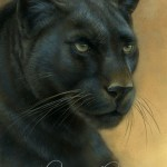 "Black Leopard Commission, ~5""×7"", watercolor on board, ©Rebecca Latham"