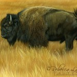 Field of Gold - Bison, watercolor and sterling silver on board, ©Rebecca Latham