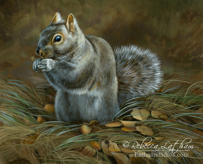 Squirrel, watercolor and sterling silver on board, ©Rebecca Latham