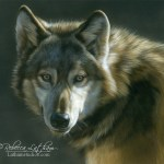 Early Light - Wolf, Watercolor & Sterling Silver 10in x 11in