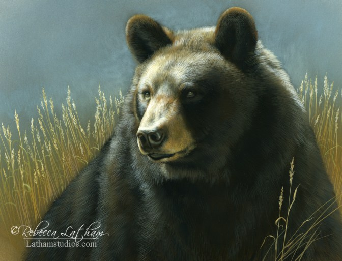 Guardian - Black Bear, 8in x 10in, opaque and transparent watercolor on board, ©Rebecca Latham