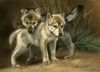 Wolf Puppies, watercolor on board, ©Rebecca Latham - Gallery One Masterworks in Miniature