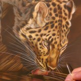 Wildlife watercolor painting bu Rebecca Latham