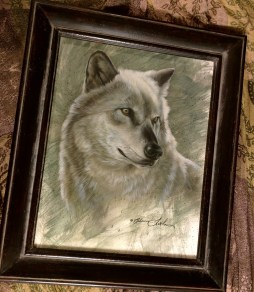 Wolf Study - Fundraiser for Wolf Park in Indiana