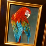 My painting, Brilliant Attire - Macaw, just arrived in Singapore for 2015's largest exhibition of wildlife art in Asia hosted by Mandala Fine Art @mandalafineart at Orchard Gateway