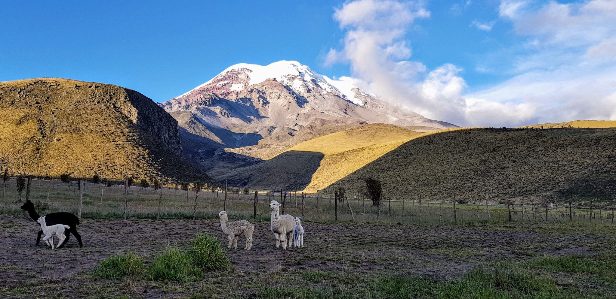 Summiting Chimborazo