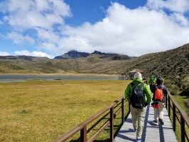 Hiking towards Cerro Rumiñahui from Limpiopungo Lake