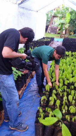 Decenia Vega with plant cloning