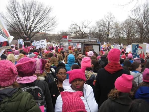 womens march on washignton pink hats
