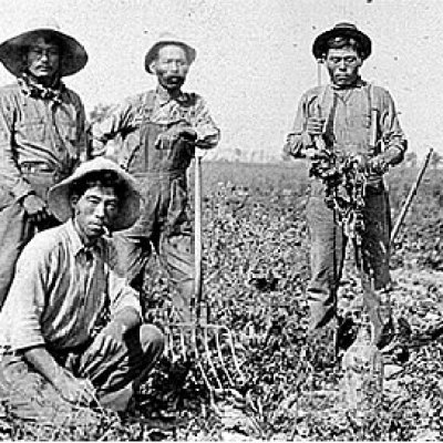 Source: United Food and Commercial Workers 324. (n.d.) 1903 Oxnard Beet Sows of Seeds of Diversity. Retrieved from: https://www.ufcw324.org/About_Us/Mission_and_History/Labor_History/1903_Oxnard_Beet_Sows_the_Seeds_of_Diversity/