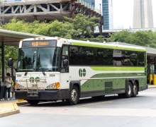 Aprovecha los descuentos en transporte y viaja gratis al zoológico