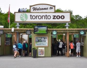 El zoológico de Toronto sólo aceptará visitantes vacunados