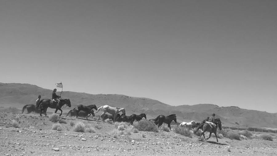 Liberaron caballos secuestrados al Lof en Resistencia Cushamen