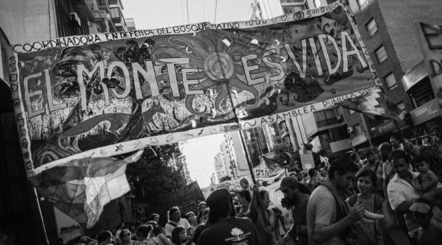 Día de la Tierra: Córdoba vuelve a movilizarse en defensa de sus bosques