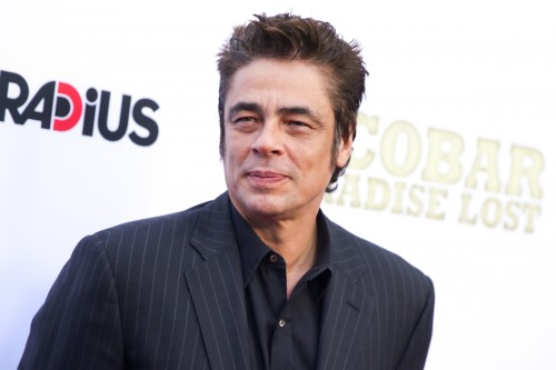 Benicio Del Toro set to play Kingpin of the Cuban-American Mafia in 'The Corporation'!