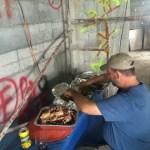 pork Raising the Roof, Panamanian-Style! Boquete Panama The Expat Life