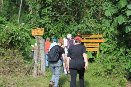 img_6647 Holidays to Remember Hiking in Panama Panama The Expat Life The Great Outdoors