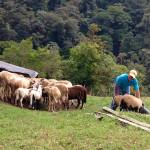 quiel6 Holidays to Remember Hiking in Panama Panama The Expat Life The Great Outdoors