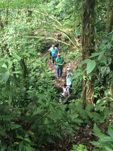 img_1484 Another Day, Another Adventure Hiking in Panama The Expat Life The Great Outdoors
