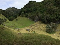 sheep-ranch-2 Volcán Barú: Another tick off the bucket list! Panama The Great Outdoors