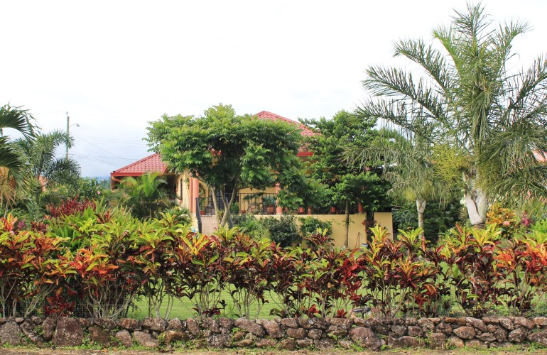 back-yard-after2-1 In Boquete, our Garden of Eden . . . Panama The Expat Life The Great Outdoors