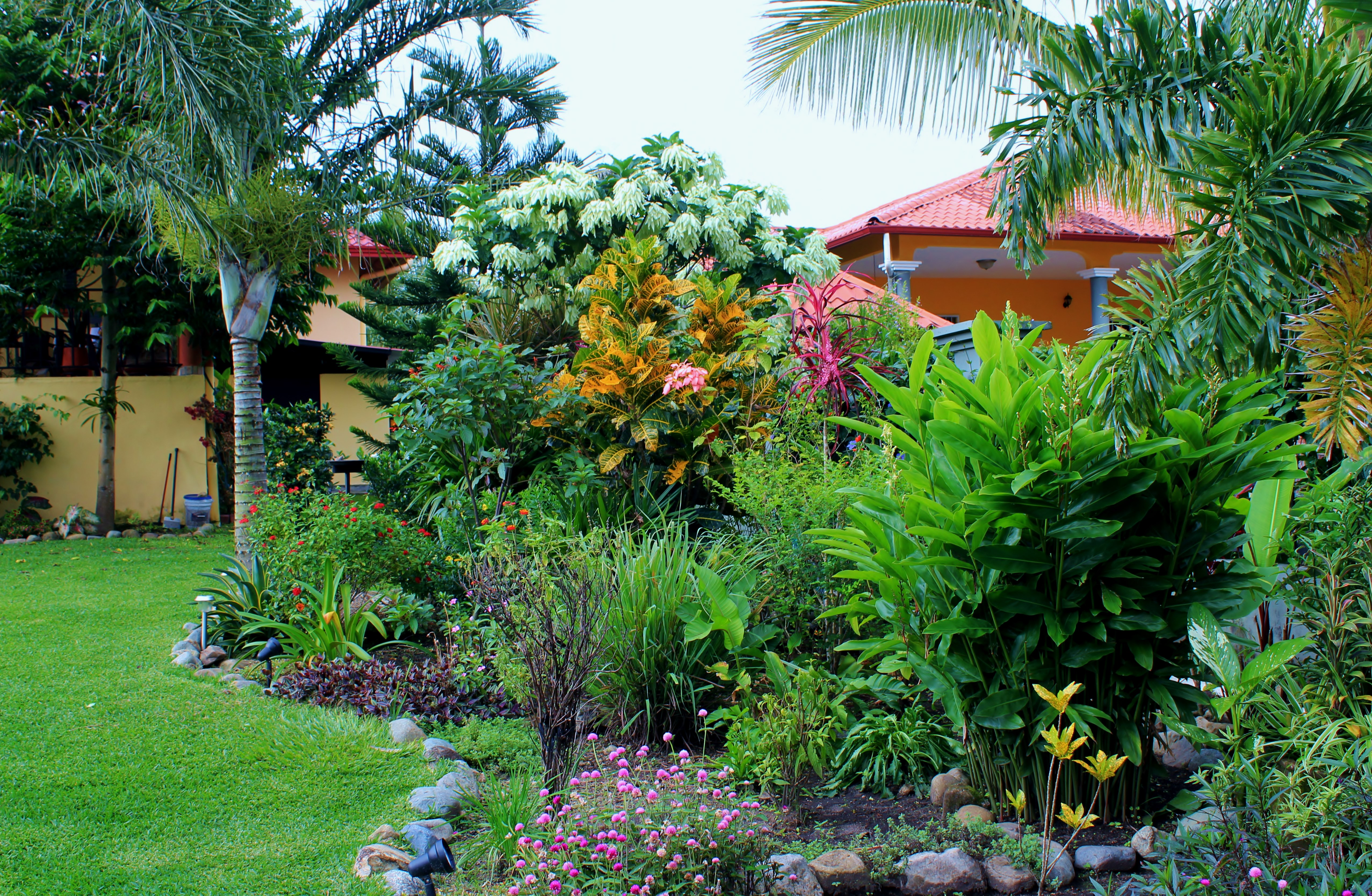 flowerbed1 In Boquete, our Garden of Eden . . . Panama The Expat Life The Great Outdoors