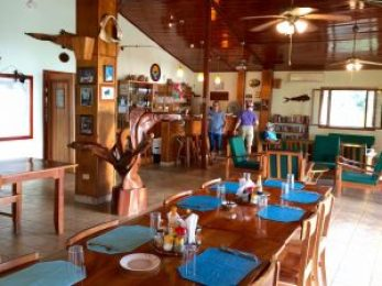 Hooked-on-Panama-Dining-Hall-and-Bar-300x225 Doggy Bliss at Hooked on Panama Panama Pets