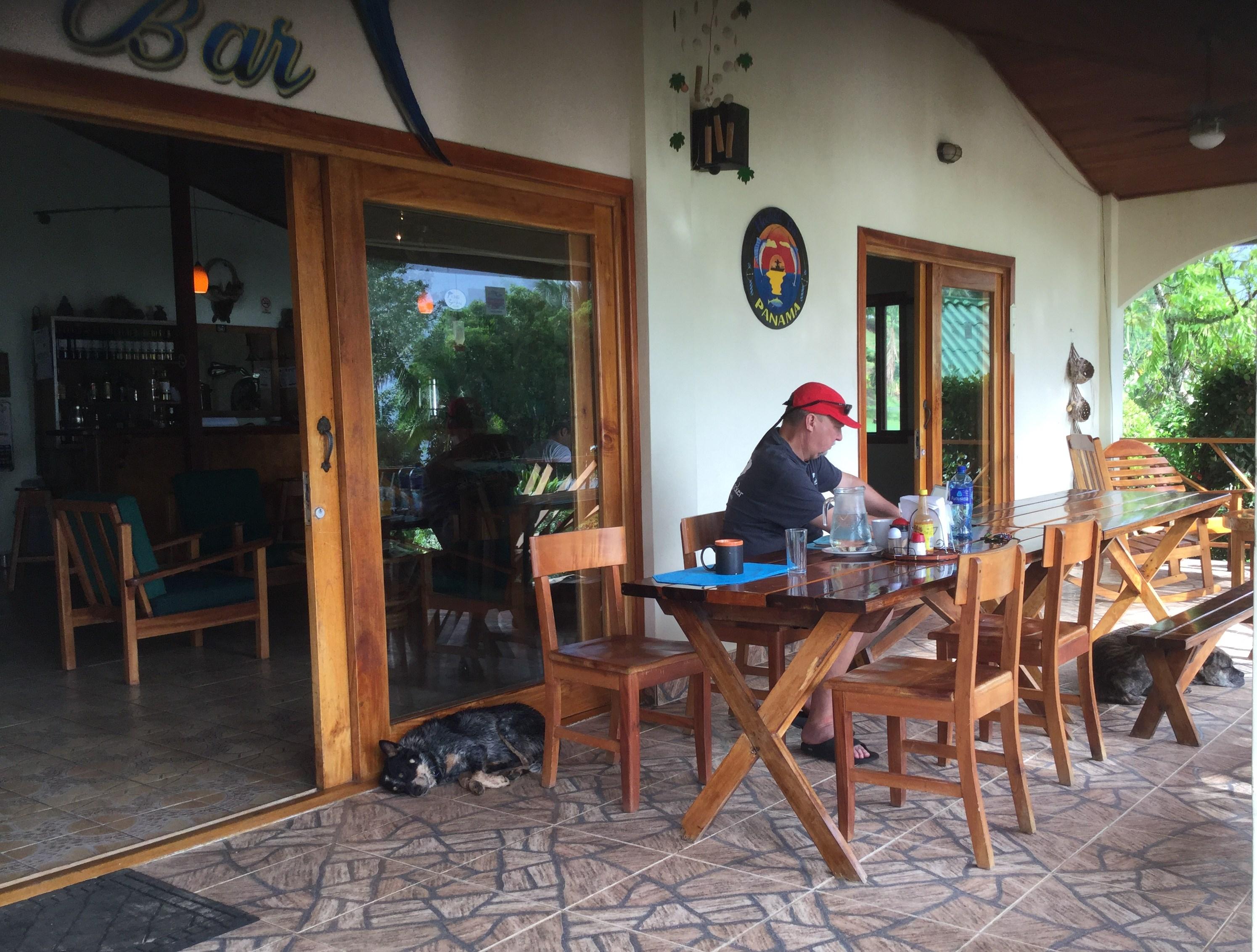 Hooked-on-Panama-Patio Doggy Bliss at Hooked on Panama Panama Pets